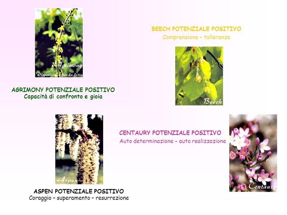AGRIMONY POTENZIALE POSITIVO Capacità di confronto e gioia ASPEN POTENZIALE POSITIVO Coraggio – superamento – resurrezione BEECH POTENZIALE POSITIVO C