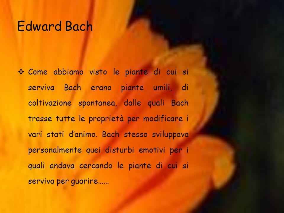 Edward Bach Come abbiamo visto le piante di cui si serviva Bach erano piante umili, di coltivazione spontanea, dalle quali Bach trasse tutte le propri