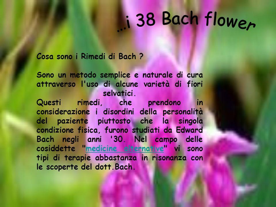 …eccoli… 1) Agrimony (Eupatoria) 2)Aspen (Pioppo) 3)Beech (Faggio rosso) 4)Centaury (Centaurea) 5)Cerato (Piombaggine) 6) Cherry Plum (Visciola) 7) Chestnud Bud (Gemme di Ippocastano) 8) Chicory (Cicoria) 9) Clematis (Clematide) 10) Crab Apple ( Mela Selvatica ) 11) Elm ( Olmo ) 12) Gentian ( Genziana ) 13) Gorse ( Ginestra ) 14) Heather ( Erica ) 15) Holly ( Agrifoglio ) 16) Honeysuckle (Caprifoglio) 17) Hornbeam ( Carpine ) 18) Impatiens 19) Larch ( Larice ) 20) Mimulus ( Mimulus) 21) Mustard (Senape) 22) Oak ( Quercia ) 23) Olive ( Olivo ) 24) Pine ( Pino Silvestre ) 25) Red Chestnut ( Castagno Rosso) 26) Rock Rose ( Eliantemo ) 27) Rock Water ( Acqua di Roccia ) 28) Scleranthus ( Scleranto ) 29) Star of Bethlehem ( Stella di Betlemme ) 30) Sweet Chestnut ( Castagno Dolce ) 31) Vervain ( Verbena ) 32) Vine ( Vite ) 33) Walnut ( Noce ) 34) Water Violet ( Violetta d Acqua ) 35) White Chestnut 36) Wild Oat ( Avena Selvatica ) 37) Wilde Rose ( Rosa Selvatica ) 38) Willow ( Salice )