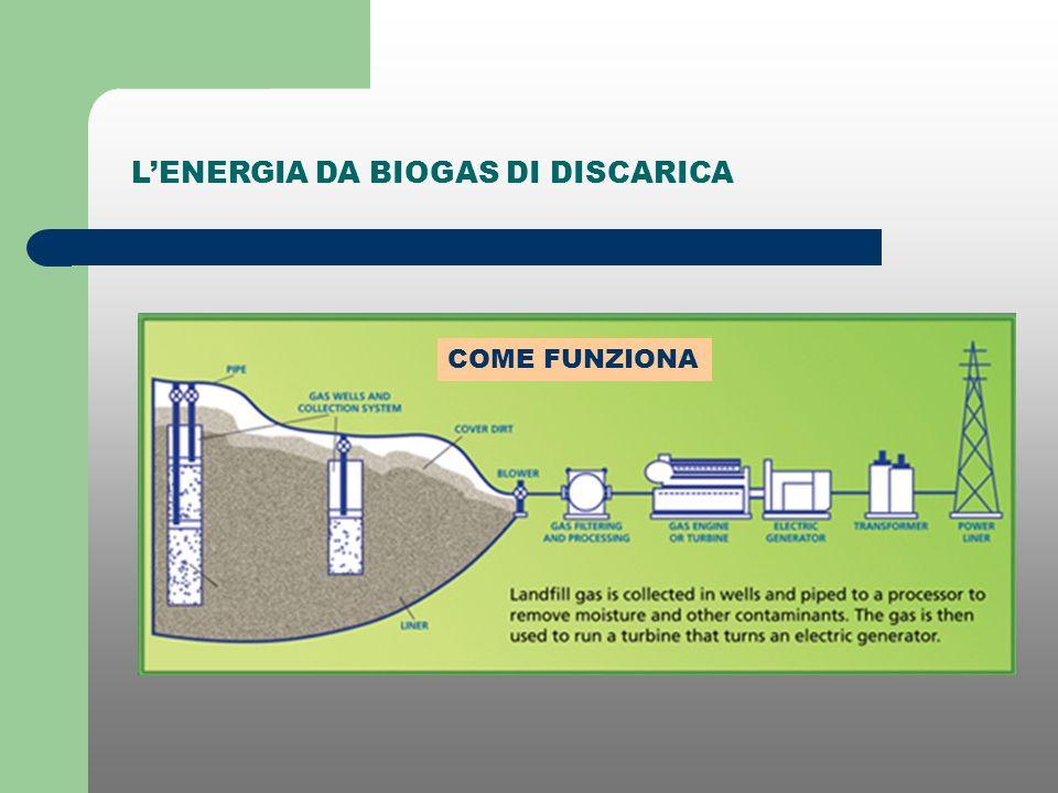 DIGESTIONE ANAEROBICA E PRODUZIONE DI BIOGAS Rifiuti a Matrice Organica e RSU Carboidrati, proteine, grassi Molecole organiche solubili Zuccheri, amminoacidi, grassi acidi Acido aceticoH2 + CO2 CH4 + CO2 idrolisi fermentazione metanogenesi