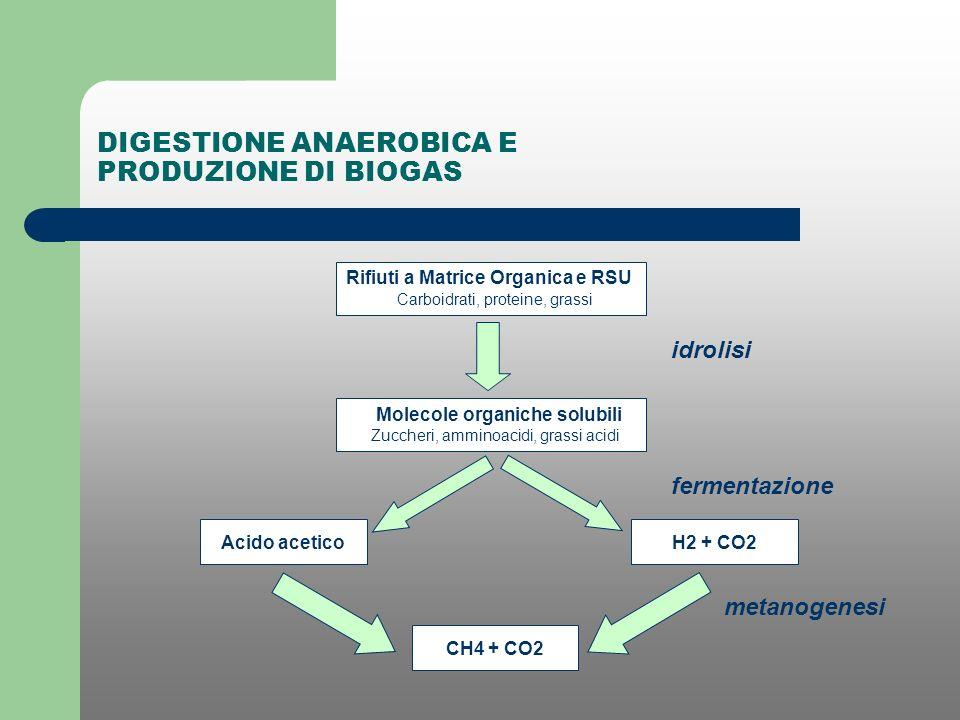DIGESTIONE ANAEROBICA E PRODUZIONE DI BIOGAS Rifiuti a Matrice Organica e RSU Carboidrati, proteine, grassi Molecole organiche solubili Zuccheri, ammi