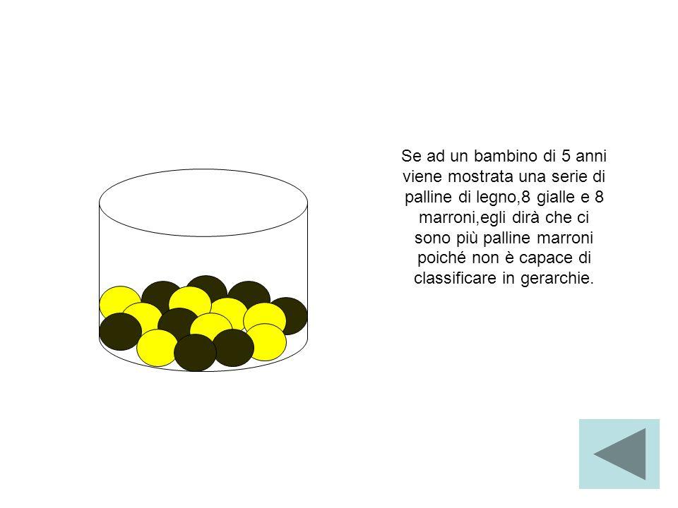 Se ad un bambino di 5 anni viene mostrata una serie di palline di legno,8 gialle e 8 marroni,egli dirà che ci sono più palline marroni poiché non è ca