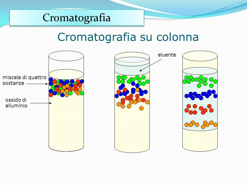 La cromatografia su carta linea di partenza carta cromatografica fase fissa fase mobile Cromatografia