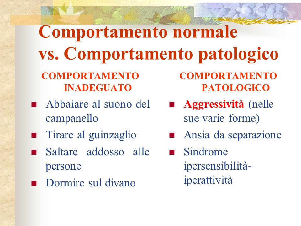 COMPORTAMENTO INADEGUATO Interpretazione ed anticipazione dei segnali emessi dal cane Educazione Comportamento normale vs.