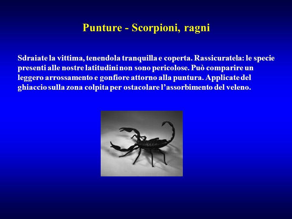 Punture - Scorpioni, ragni Sdraiate la vittima, tenendola tranquilla e coperta. Rassicuratela: le specie presenti alle nostre latitudini non sono peri