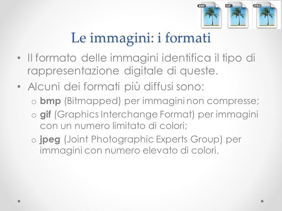 Le immagini: i formati Il formato delle immagini identifica il tipo di rappresentazione digitale di queste. Alcuni dei formati più diffusi sono: o bmp