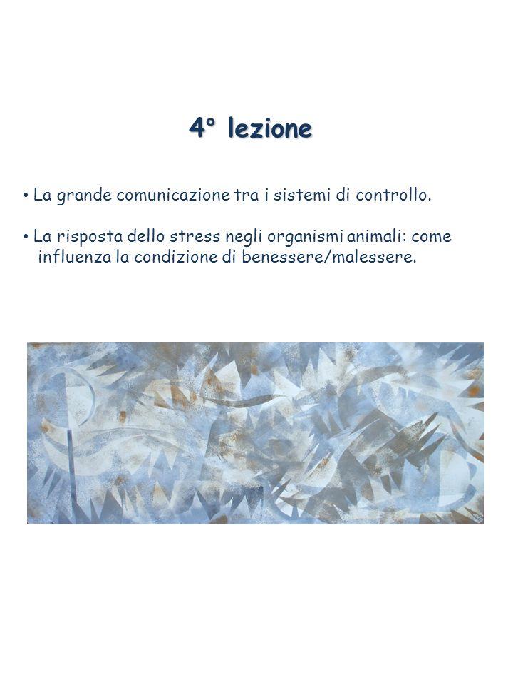 4° lezione La grande comunicazione tra i sistemi di controllo. La risposta dello stress negli organismi animali: come influenza la condizione di benes