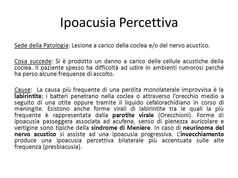 Ipoacusia Percettiva Sede della Patologia: Lesione a carico della coclea e/o del nervo acustico. Cosa succede: Si è prodotto un danno a carico delle c