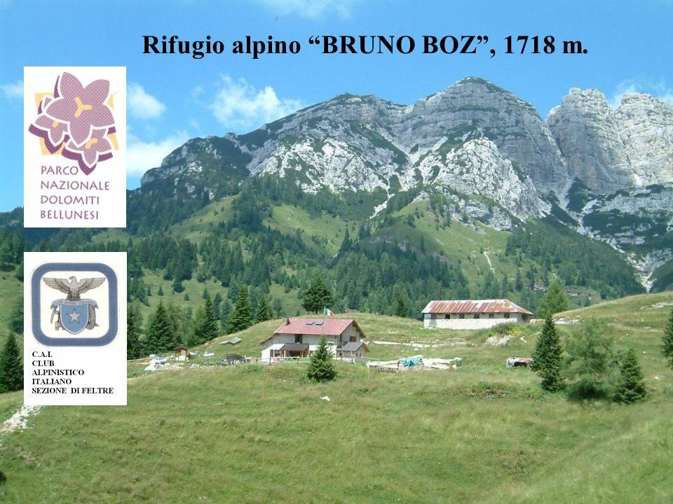 Rifugio alpino BRUNO BOZ, 1718 m.