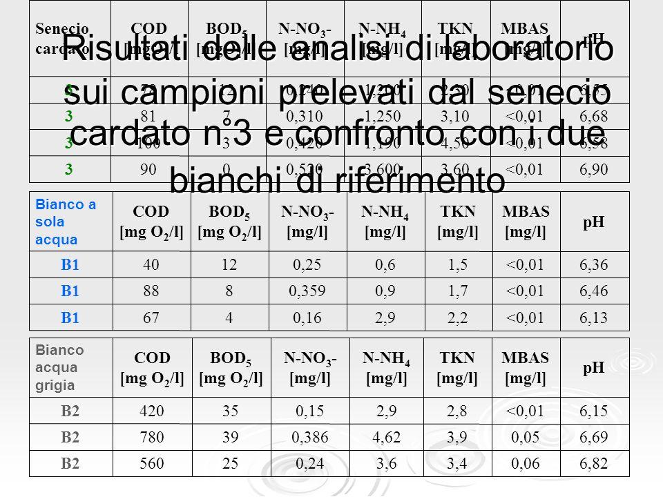 Risultati delle analisi di laboratorio sui campioni prelevati dal senecio cardato n°3 e confronto con i due bianchi di riferimento 6,13<0,012,22,90,16