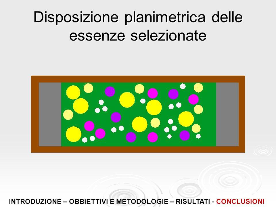 Disposizione planimetrica delle essenze selezionate INTRODUZIONE – OBBIETTIVI E METODOLOGIE – RISULTATI - CONCLUSIONI