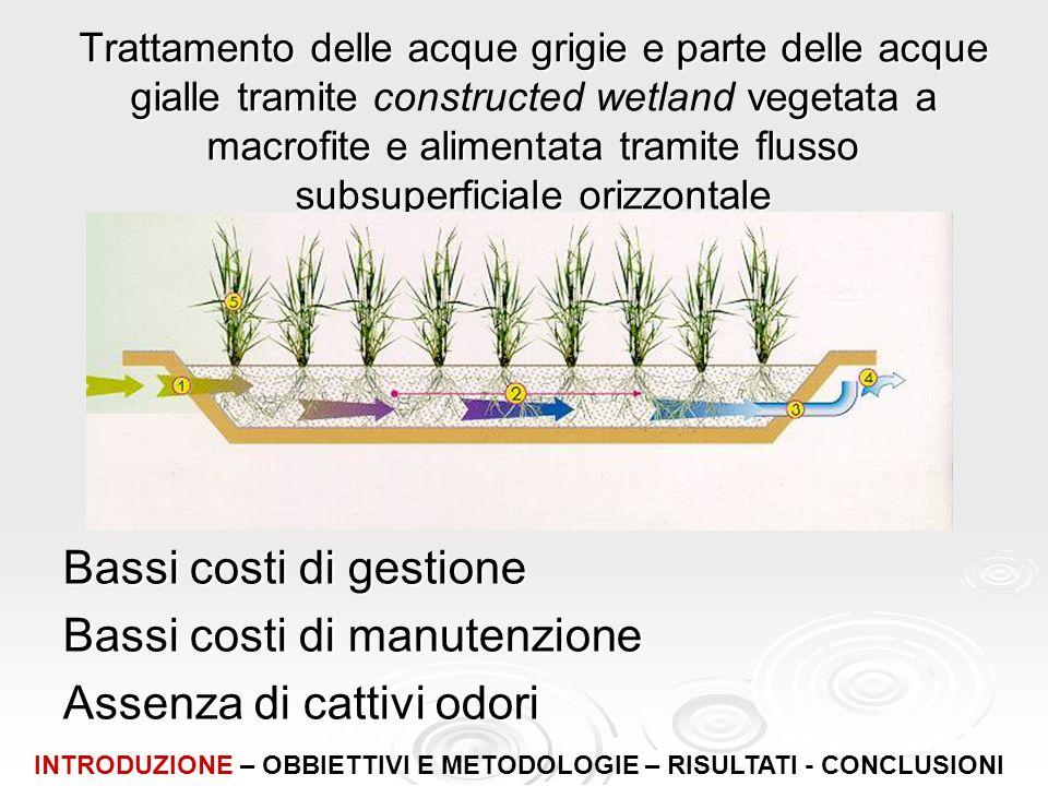 Trattamento delle acque grigie e parte delle acque gialle tramite vegetata a macrofite e alimentata tramite flusso subsuperficiale orizzontale Trattam