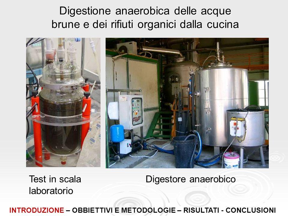 Digestione anaerobica delle acque brune e dei rifiuti organici dalla cucina Test in scala laboratorio Digestore anaerobico INTRODUZIONE – OBBIETTIVI E