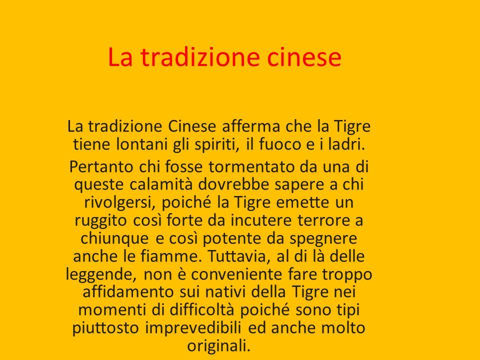La tradizione cinese La tradizione Cinese afferma che la Tigre tiene lontani gli spiriti, il fuoco e i ladri. Pertanto chi fosse tormentato da una di