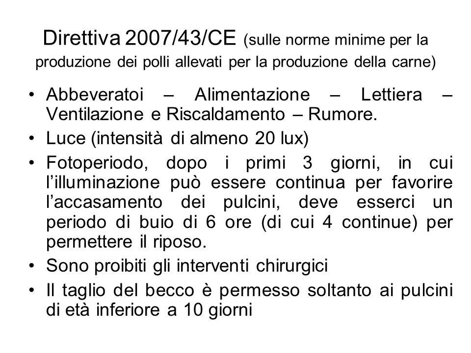 Direttiva 2007/43/CE (sulle norme minime per la produzione dei polli allevati per la produzione della carne) Abbeveratoi – Alimentazione – Lettiera –