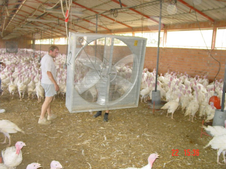 In generale si possono avere due tipi fondamentali di ventilazione: VENTILAZIONE NATURALE VENTILAZIONE FORZATA