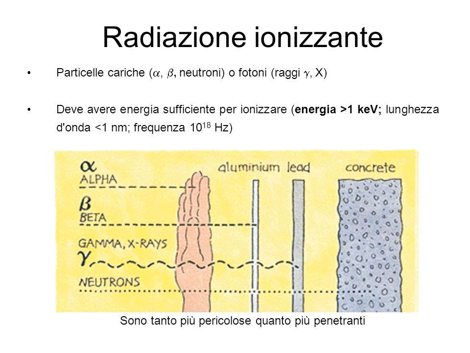 Radiazione ionizzante Particelle cariche (, neutroni) o fotoni (raggi, X) Deve avere energia sufficiente per ionizzare (energia >1 keV; lunghezza d onda <1 nm; frequenza 10 18 Hz) Sono tanto più pericolose quanto più penetranti
