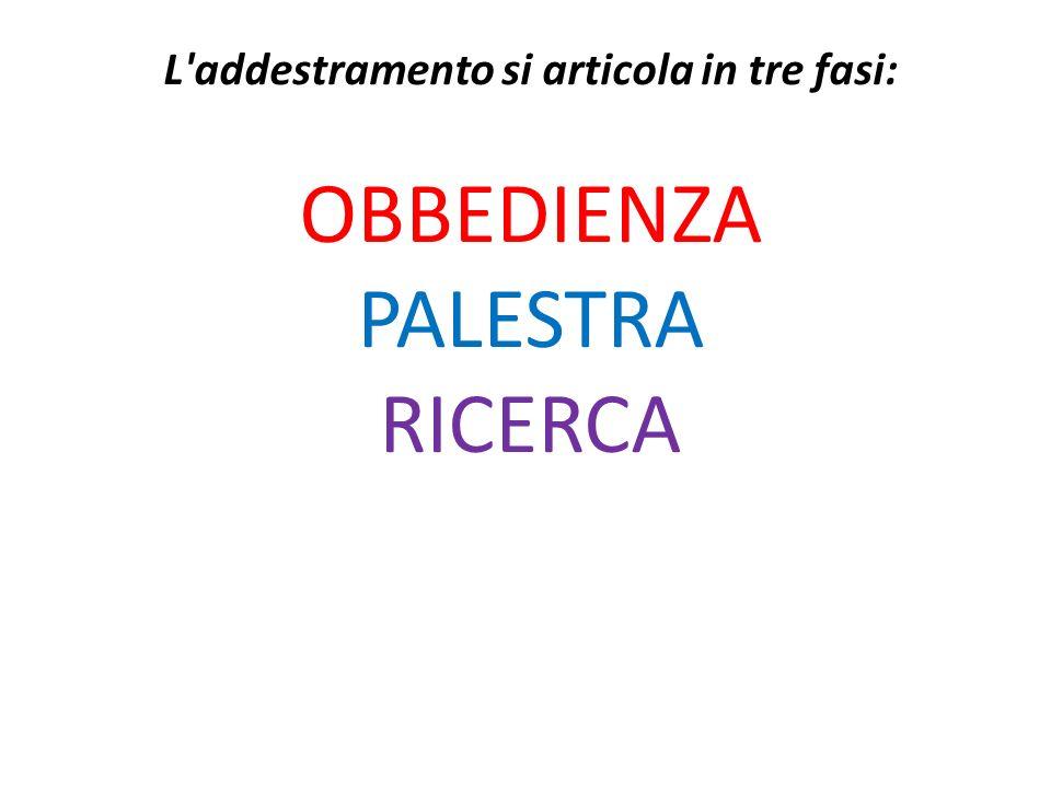 L'addestramento si articola in tre fasi: OBBEDIENZA PALESTRA RICERCA