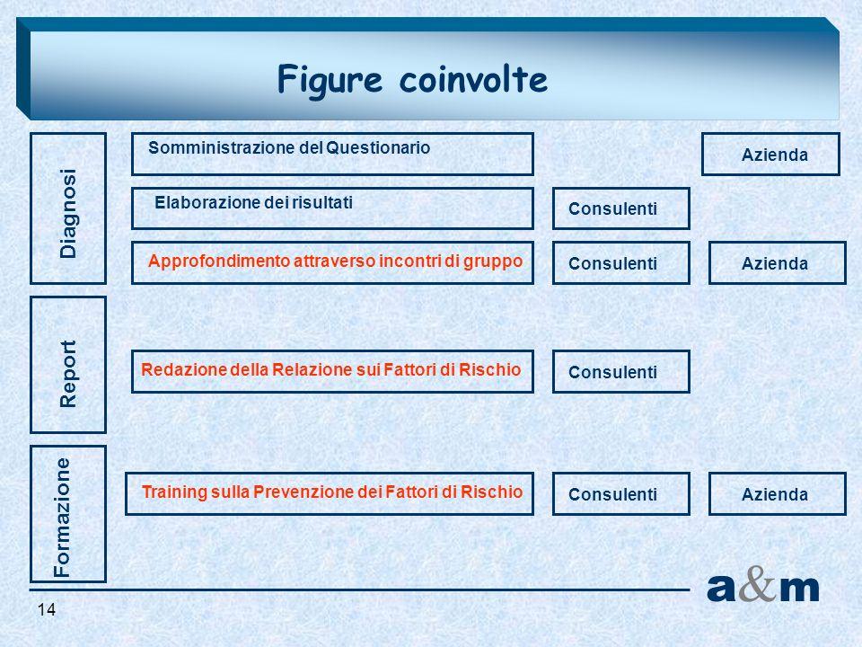 Figure coinvolte Diagnosi Report a&ma&m Formazione Somministrazione del Questionario Elaborazione dei risultati Approfondimento attraverso incontri di