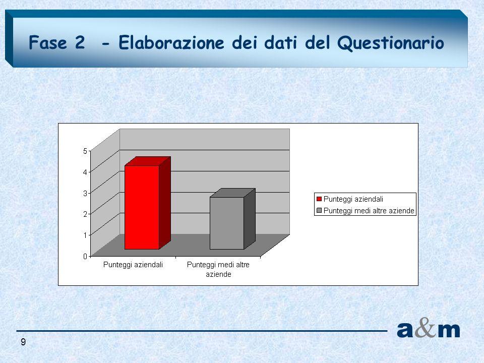 Fase 2 - Elaborazione dei dati del Questionario 9 a&ma&m
