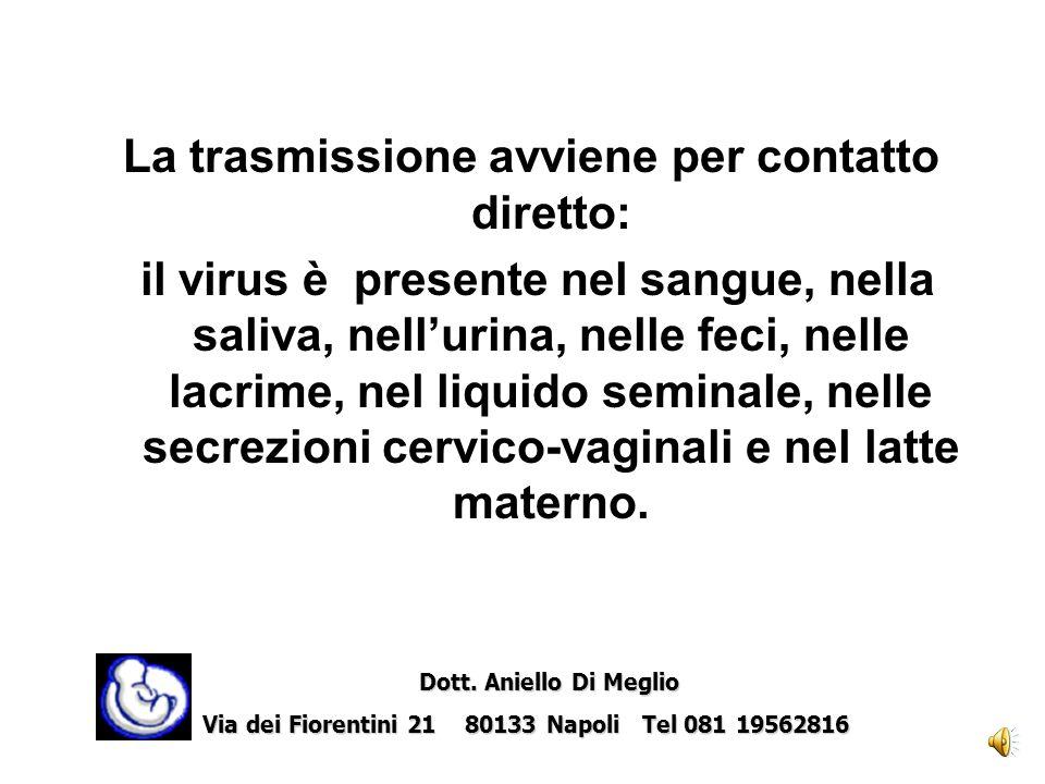La trasmissione avviene per contatto diretto: il virus è presente nel sangue, nella saliva, nellurina, nelle feci, nelle lacrime, nel liquido seminale, nelle secrezioni cervico-vaginali e nel latte materno.