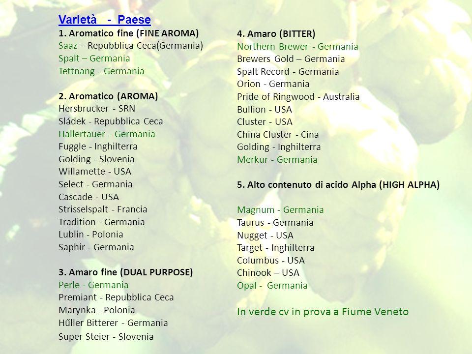 Varietà - Paese 1. Aromatico fine (FINE AROMA) Saaz – Repubblica Ceca(Germania) Spalt – Germania Tettnang - Germania 2. Aromatico (AROMA) Hersbrucker