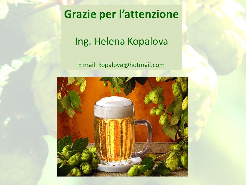 Grazie per lattenzione Ing. Helena Kopalova E mail: kopalova@hotmail.com