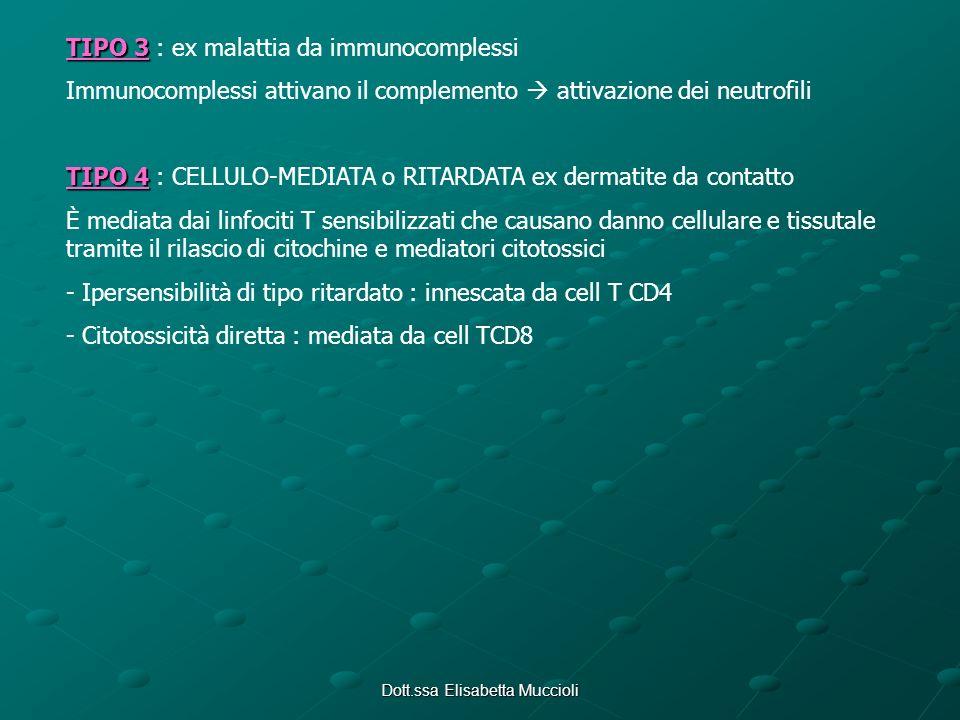 Dott.ssa Elisabetta Muccioli TIPO 3 TIPO 3 : ex malattia da immunocomplessi Immunocomplessi attivano il complemento attivazione dei neutrofili TIPO 4