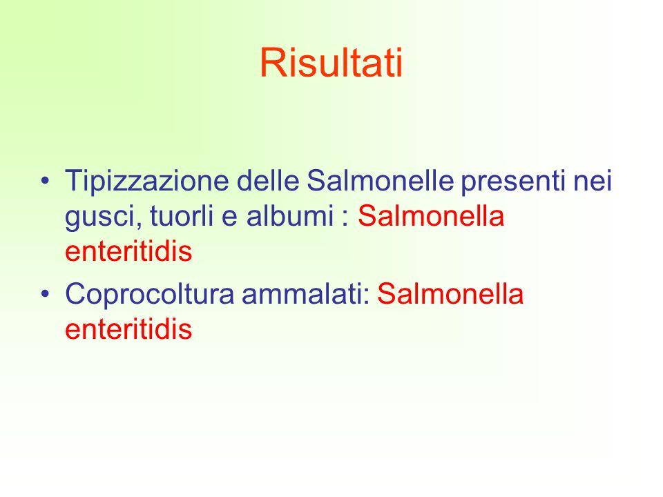 Tipizzazione delle Salmonelle presenti nei gusci, tuorli e albumi : Salmonella enteritidis Coprocoltura ammalati: Salmonella enteritidis Risultati