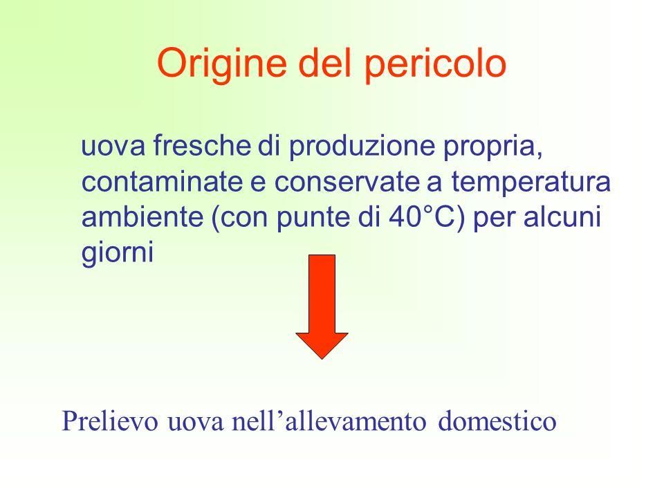 Origine del pericolo uova fresche di produzione propria, contaminate e conservate a temperatura ambiente (con punte di 40°C) per alcuni giorni Prelievo uova nellallevamento domestico