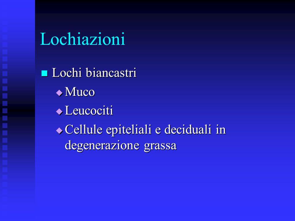 Lochiazioni Lochi biancastri Lochi biancastri Muco Muco Leucociti Leucociti Cellule epiteliali e deciduali in degenerazione grassa Cellule epiteliali e deciduali in degenerazione grassa