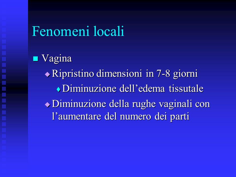 Fenomeni locali Vagina Vagina Ripristino dimensioni in 7-8 giorni Ripristino dimensioni in 7-8 giorni Diminuzione delledema tissutale Diminuzione delledema tissutale Diminuzione della rughe vaginali con laumentare del numero dei parti Diminuzione della rughe vaginali con laumentare del numero dei parti