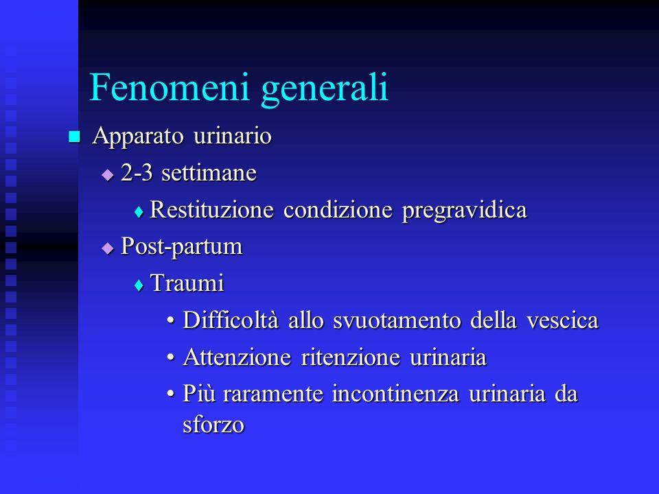 Fenomeni generali Apparato urinario Apparato urinario 2-3 settimane 2-3 settimane Restituzione condizione pregravidica Restituzione condizione pregravidica Post-partum Post-partum Traumi Traumi Difficoltà allo svuotamento della vescicaDifficoltà allo svuotamento della vescica Attenzione ritenzione urinariaAttenzione ritenzione urinaria Più raramente incontinenza urinaria da sforzoPiù raramente incontinenza urinaria da sforzo
