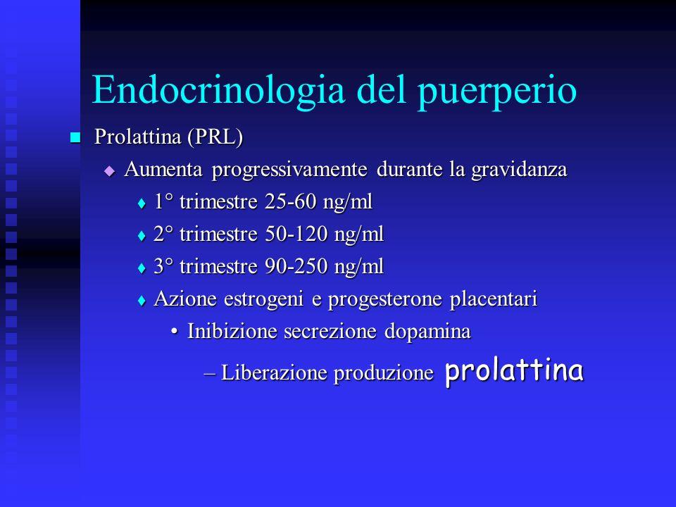 Endocrinologia del puerperio Prolattina (PRL) Prolattina (PRL) Aumenta progressivamente durante la gravidanza Aumenta progressivamente durante la gravidanza 1° trimestre 25-60 ng/ml 1° trimestre 25-60 ng/ml 2° trimestre 50-120 ng/ml 2° trimestre 50-120 ng/ml 3° trimestre 90-250 ng/ml 3° trimestre 90-250 ng/ml Azione estrogeni e progesterone placentari Azione estrogeni e progesterone placentari Inibizione secrezione dopaminaInibizione secrezione dopamina –Liberazione produzione prolattina