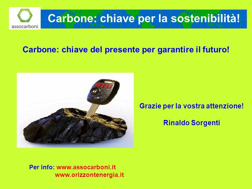 Carbone: chiave per la sostenibilità! Carbone: chiave del presente per garantire il futuro! Grazie per la vostra attenzione! Rinaldo Sorgenti Per info