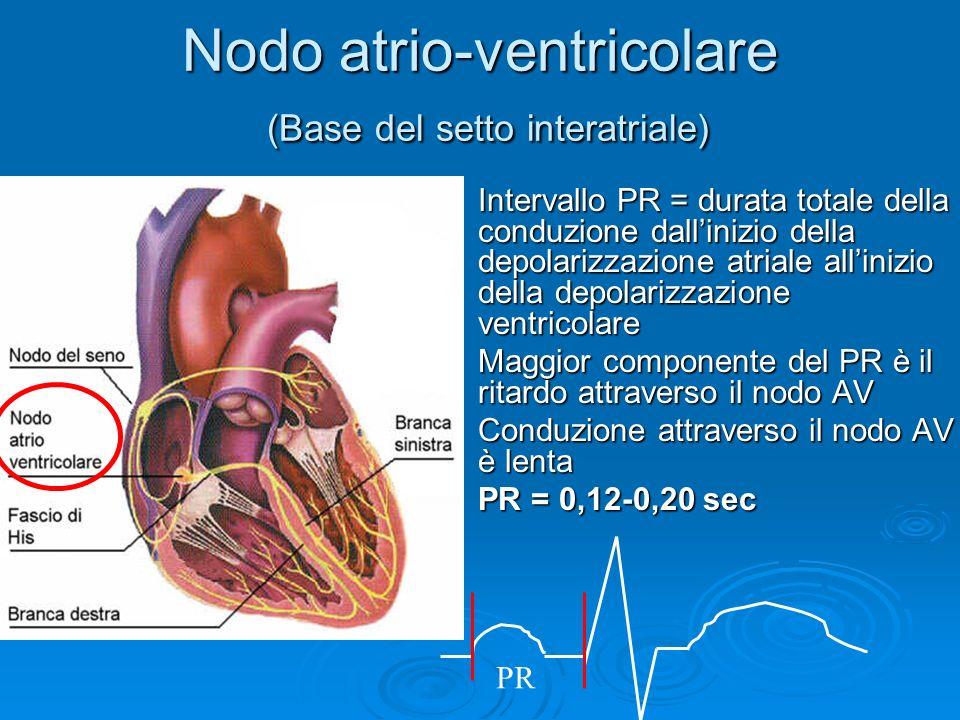 Nodo atrio-ventricolare (Base del setto interatriale) Intervallo PR = durata totale della conduzione dallinizio della depolarizzazione atriale alliniz