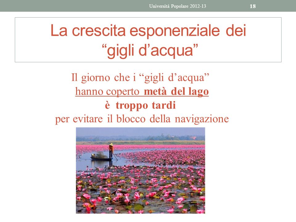 La crescita esponenziale dei gigli dacqua Università Popolare 2012-13 18 Il giorno che i gigli dacqua hanno coperto metà del lago è troppo tardi per e