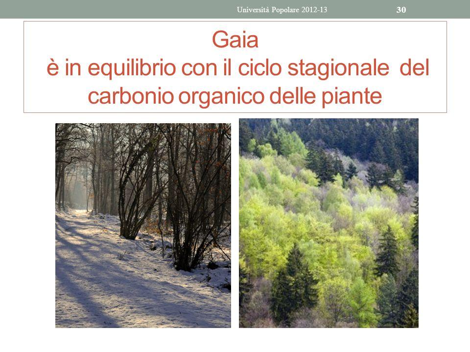 Gaia è in equilibrio con il ciclo stagionale del carbonio organico delle piante Università Popolare 2012-13 30
