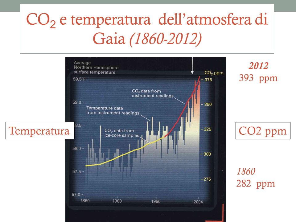 31 CO 2 e temperatura dellatmosfera di Gaia (1860-2012) Temperatura CO2 ppm 2012 393 ppm 1860 282 ppm Università Popolare 2012-13