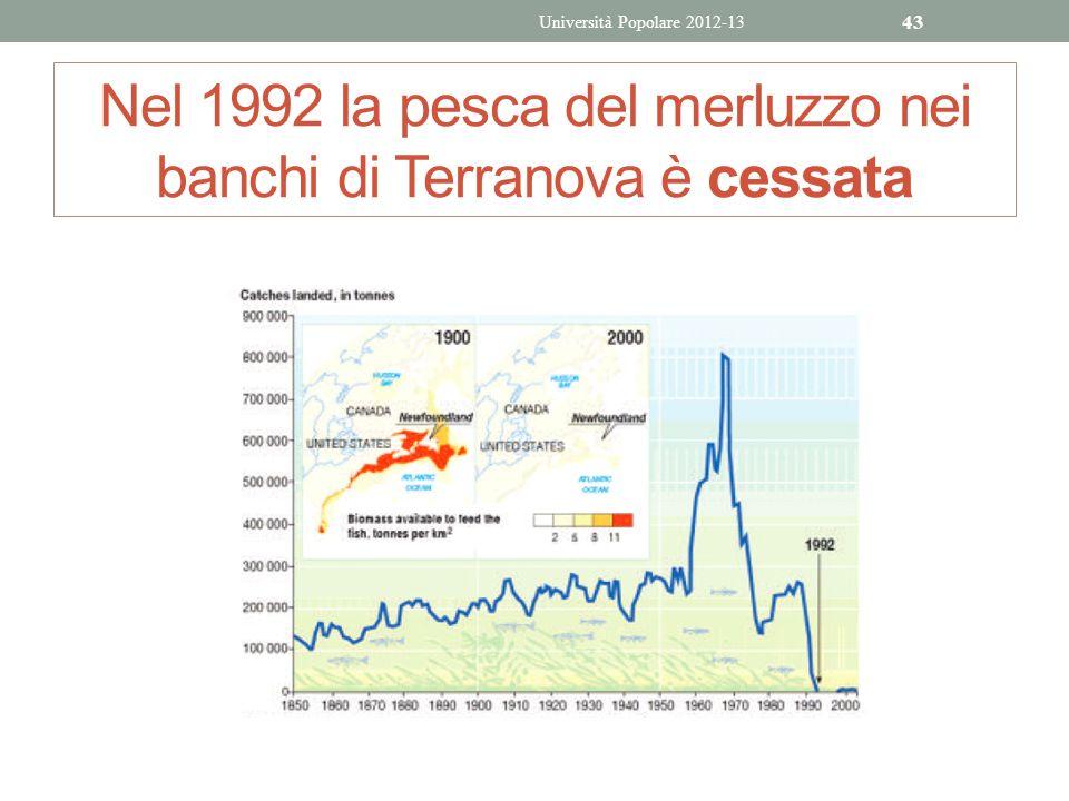 Nel 1992 la pesca del merluzzo nei banchi di Terranova è cessata Università Popolare 2012-13 43