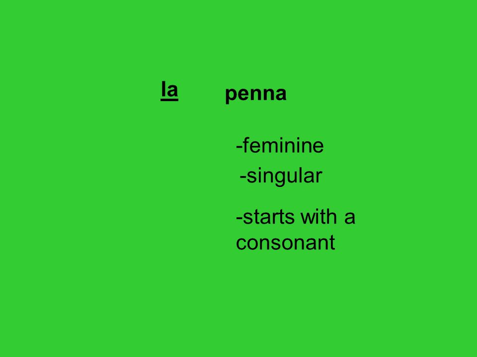 penna la -feminine -singular -starts with a consonant