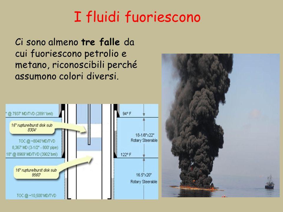 I fluidi fuoriescono Ci sono almeno tre falle da cui fuoriescono petrolio e metano, riconoscibili perché assumono colori diversi.