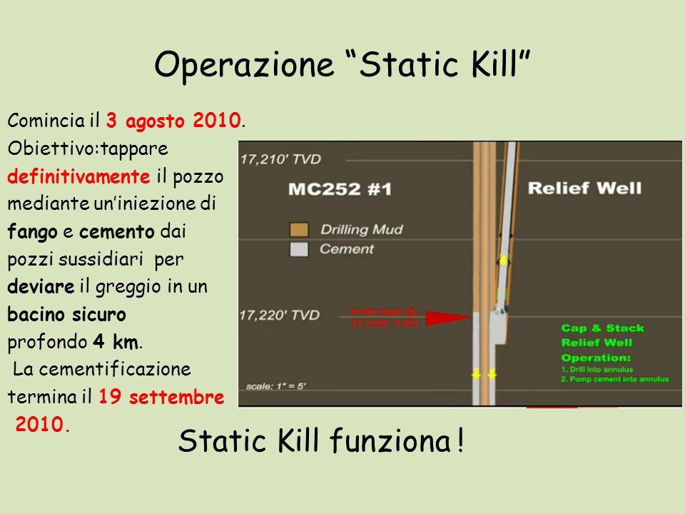 Operazione Static Kill Comincia il 3 agosto 2010. Obiettivo:tappare definitivamente il pozzo mediante uniniezione di fango e cemento dai pozzi sussidi