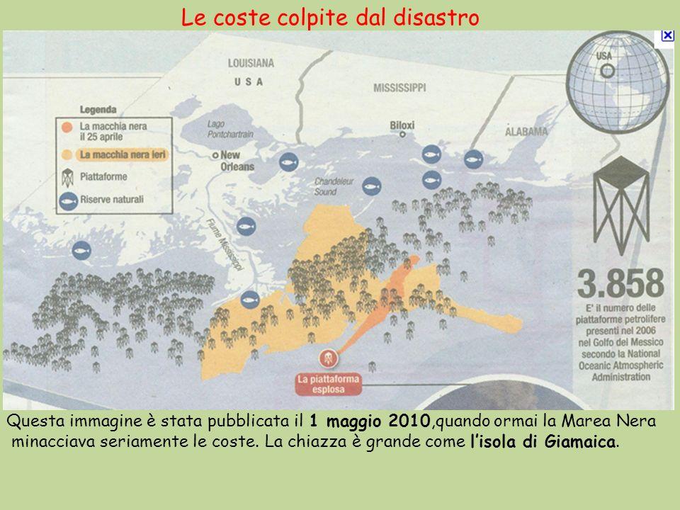 Le coste colpite dal disastro Questa immagine è stata pubblicata il 1 maggio 2010,quando ormai la Marea Nera minacciava seriamente le coste. La chiazz