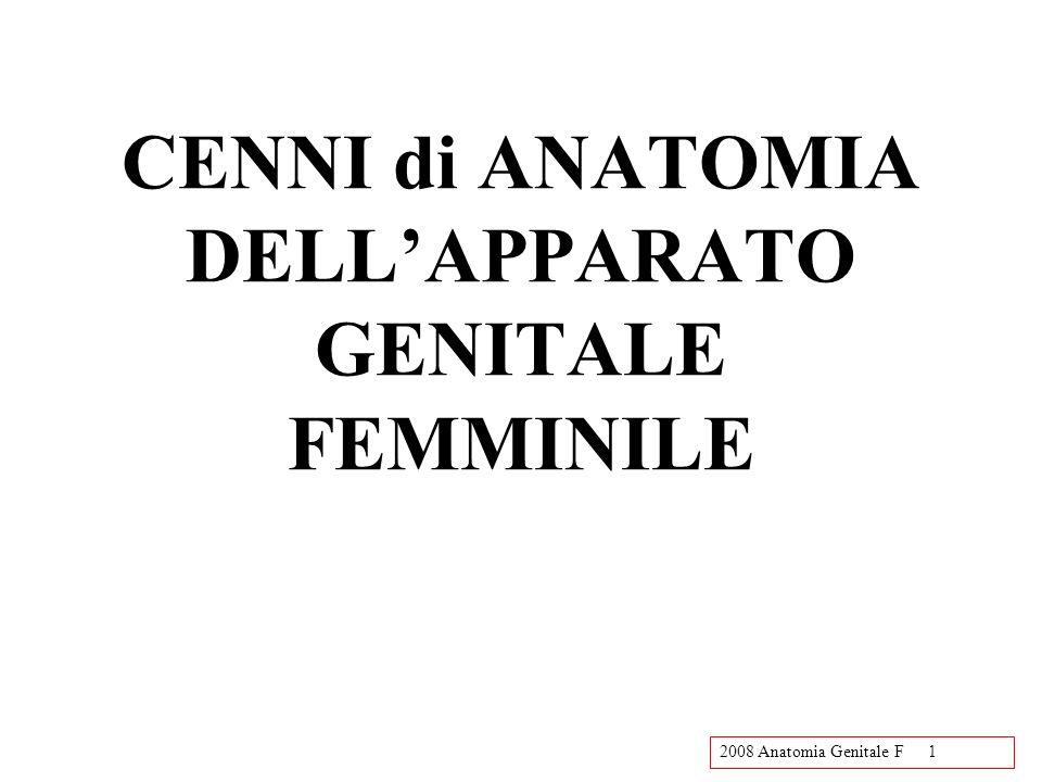 2008 Anatomia Genitale F1 CENNI di ANATOMIA DELLAPPARATO GENITALE FEMMINILE