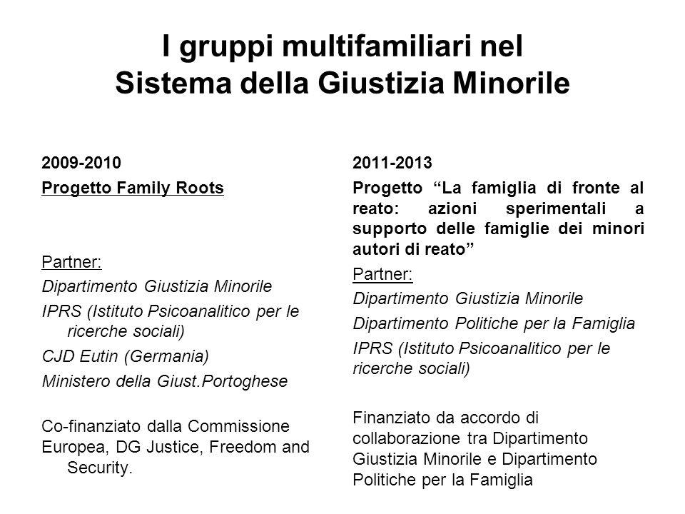 I gruppi multifamiliari nel Sistema della Giustizia Minorile 2009-2010 Progetto Family Roots Partner: Dipartimento Giustizia Minorile IPRS (Istituto P