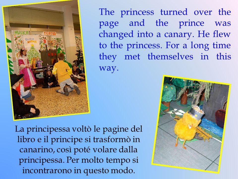 La principessa voltò le pagine del libro e il principe si trasformò in canarino, così poté volare dalla principessa. Per molto tempo si incontrarono i