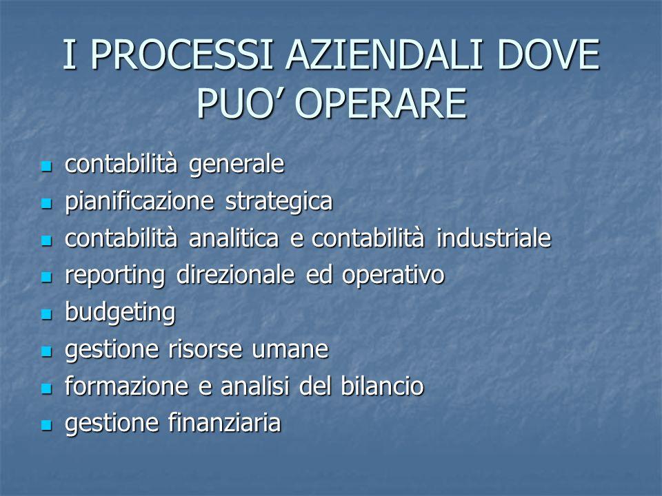 I PROCESSI AZIENDALI DOVE PUO OPERARE contabilità generale contabilità generale pianificazione strategica pianificazione strategica contabilità analit