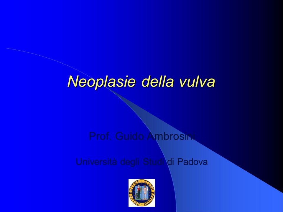 Neoplasie della vulva Prof. Guido Ambrosini Università degli Studi di Padova