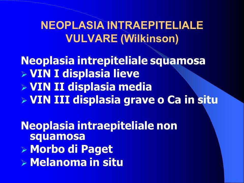 NEOPLASIA INTRAEPITELIALE VULVARE (Wilkinson) Neoplasia intrepiteliale squamosa VIN I displasia lieve VIN II displasia media VIN III displasia grave o